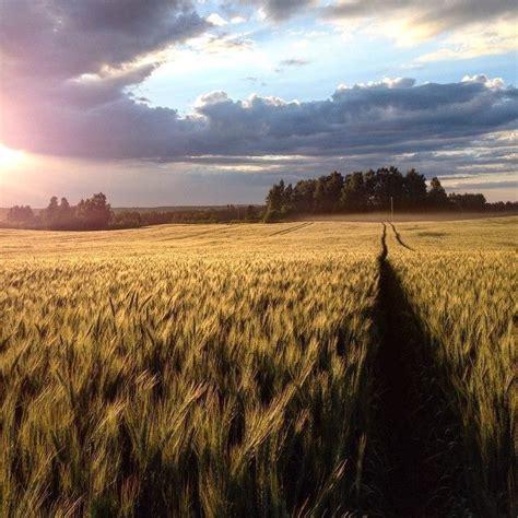 40 pārsteidzoši skaistas bildes ar Latvijas vasaru ...
