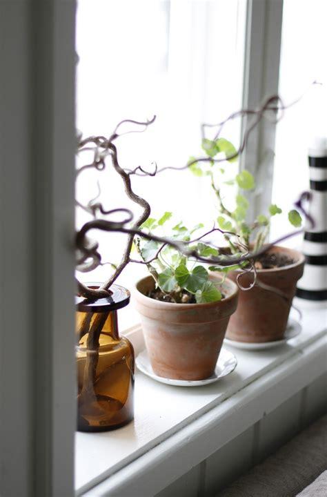 Best Windowsill Plants by 79 Best Window Windowsill Whimsy Images On