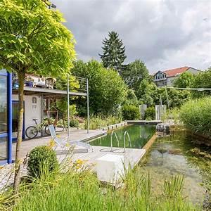 Schwimmteich Im Garten : schwimmteiche in bodenseeregion und allg u haas galabau ~ Sanjose-hotels-ca.com Haus und Dekorationen
