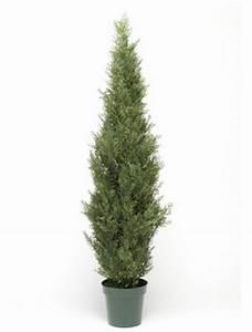 Baum Im Topf : juniperus baum wacholder kunstbaum im topf terrapalme ~ Michelbontemps.com Haus und Dekorationen