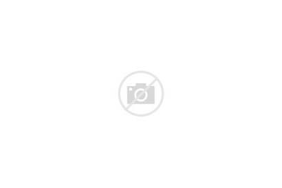 Houses Development Modern Street Rural Suburban Housing