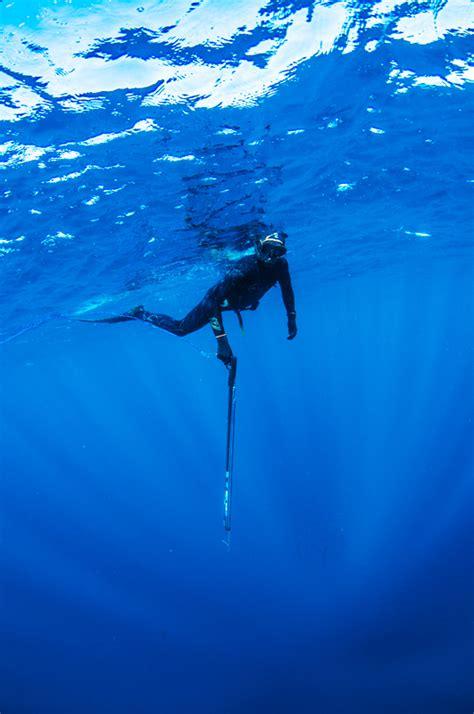 diving spear fishing tips tricks   gear
