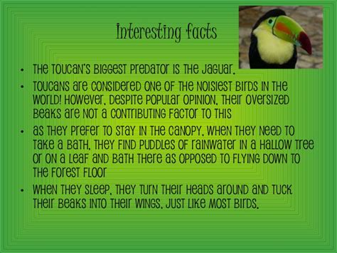 How To Sleep On Floor by Toucans