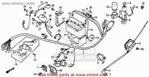 Honda C70 Passport 1980  A  Usa Wire Harness    Horn