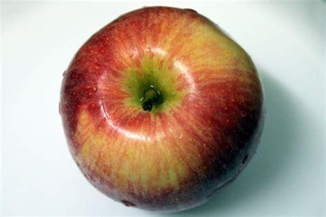 fruits  stock photo public domain pictures