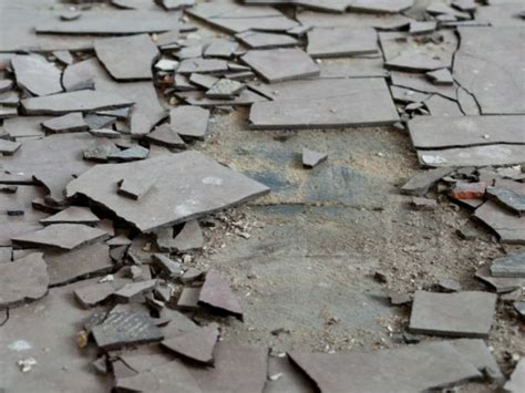 asbestos backed vinyl flooring removal bc asbestos removals