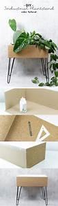 25 best plant decor ideas on pinterest for Whirlpool garten mit balkon sanieren schritt für schritt