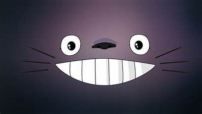 Totoro Wallpapers Anime Pixelstalk Cartoon