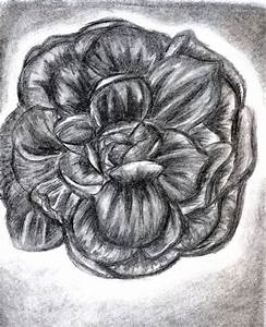 Charcoal Flower by sharmz on deviantART