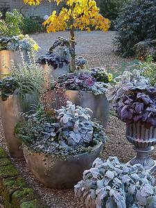 Balkon Gestaltungsideen Pflanzen : winterliche gestaltungsideen mit pflanzen ~ Lizthompson.info Haus und Dekorationen