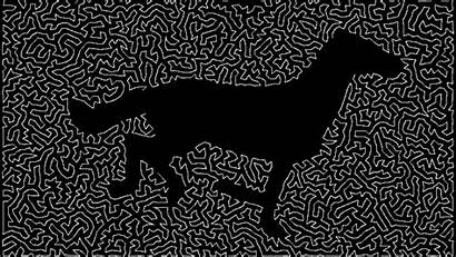 Horse Traveling Salesman Tsp Computer Flash Ninapaley