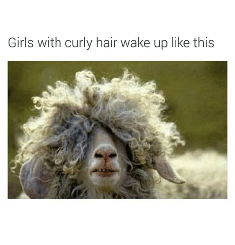 Curly Hair Meme - girls with curly hair wake up like this funny meme on sizzle