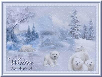 Wonderland Winter Vinterbilleder Billeder Dk