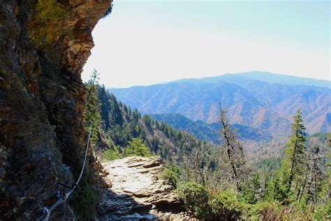 7 of the Best Smoky Mountain Hiking Trails for All Skill ...