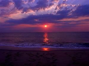 sunrise, purple, beautiful, beach, seascape, pictures