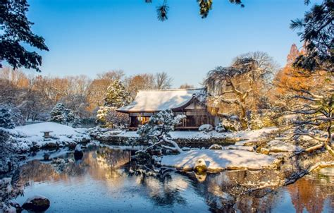 wallpaper winter trees house pond park philadelphia