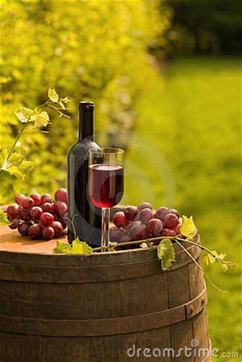 red wine bottle wineglass  grapes  vineyard stock