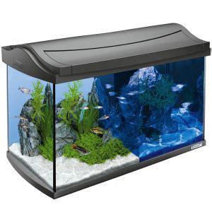 tetra aquaart 60l led aquarium set free p p on orders 163 29