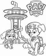 Paw Patrol Coloring Skye Pages Zuma Sheet Printable Colorir sketch template