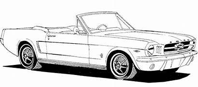 Mustang Clipart Convertible Clip Ford 1965 Classic