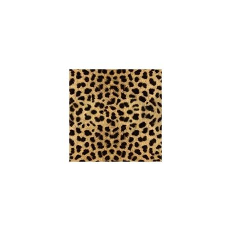 Myxer Wallpapers Animals - 82 best cheetah print stuff images on leopard