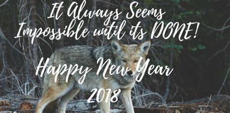 New Year Quotes Funny 2019