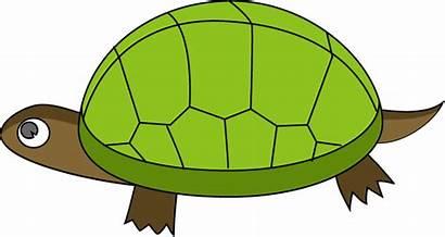 Tortoise Clipart Clip Desert Tortoises Slow Cliparts