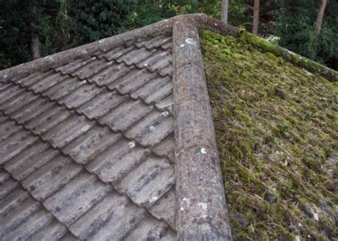 how much does it cost to replace roof cement