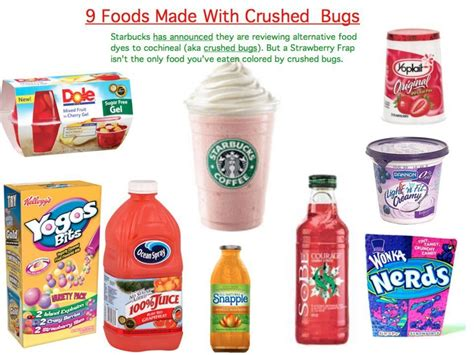 what is food coloring made of did you food coloring is made from crushed bugs