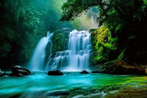 forest waterfall waterfalls nature background