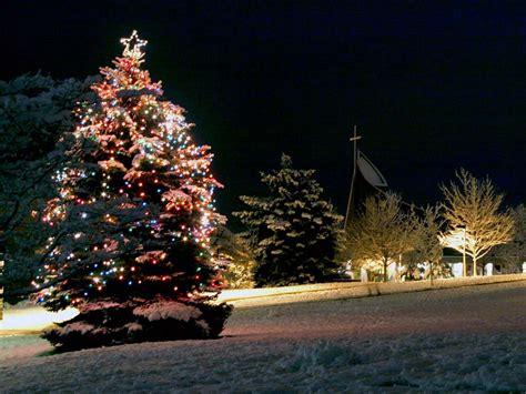 christmas tree free desktop wallpapers page 1