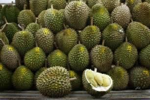 Exotic Tropical Fruit Names