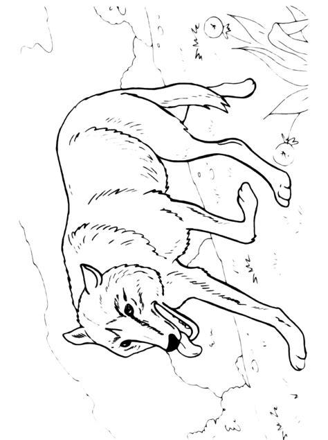 lupo disegno facile per bambini disegnidacolorare it