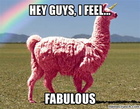 I Am Fabulous Meme - fabulous llama