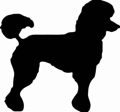 Poodle Svg Standard Silhouette Dog Outline Clip