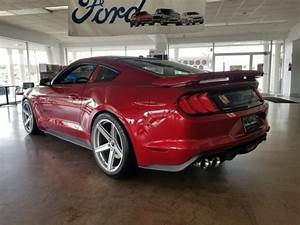 2020 Ford Mustang GT Saleen 302 White Label in Morristown ...