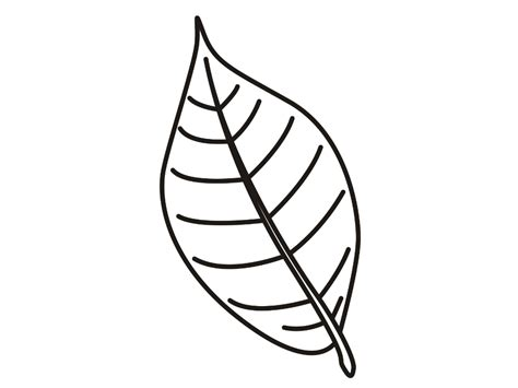 Coloring Leaf by Leaf Coloring Pages Coloringsuite