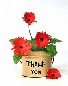 Thank You Flower Port Graphic - Images, Photos, Pictures