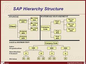 Sap Fi Organization Structure