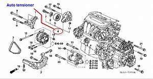 Wiring Diagram  34 2003 Honda Accord V6 Serpentine Belt