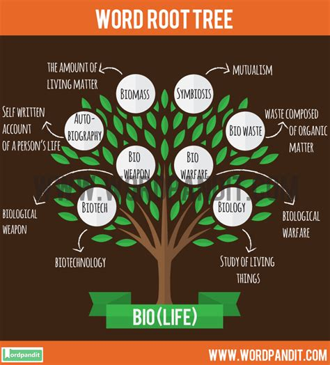 Know About Bio Root Word And Words Based On This Root Bio