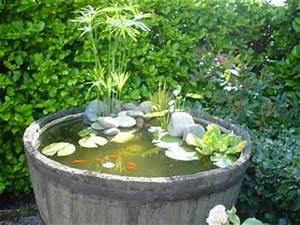 Mini Bassin De Jardin. mini piscine biologique et bassin de jardin ...