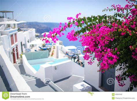 Street Scene Santorini Greek Island Stock Photo Image
