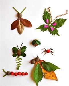 Aus Blättern Basteln : basteln sie mit den kindern insekten aus laub und frischen ~ Lizthompson.info Haus und Dekorationen