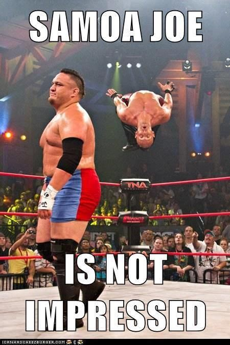 Pro Wrestling Memes - 17 best ideas about wrestling memes on pinterest wwe funny wwe and john cena