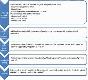 An Algorithm For An Upper Limb Neurological Examination In