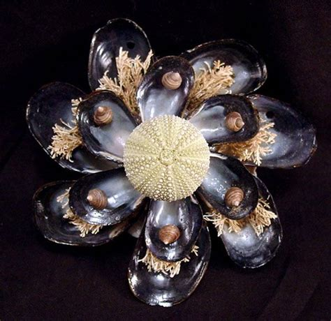 seashell ornaments west barnstable seashell company
