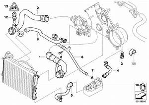 Bmw 540i Water Hose  Engine  Cooling  Hoses