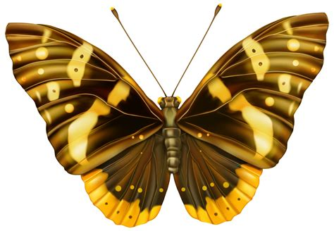 Brown and Yellow Butterfly Clipart PNG Image Gallery