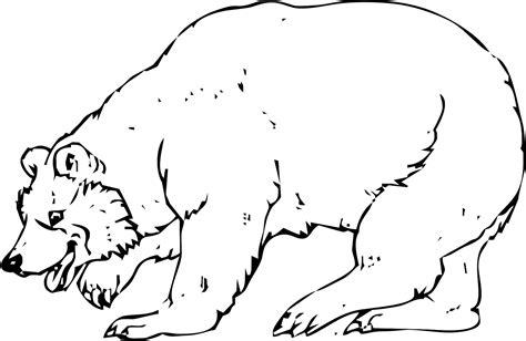 disegni da colorare di siamo orsi sta e colora orso